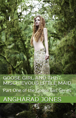 Goose Girl & the Mischievous Little Maid by Angharad Jones