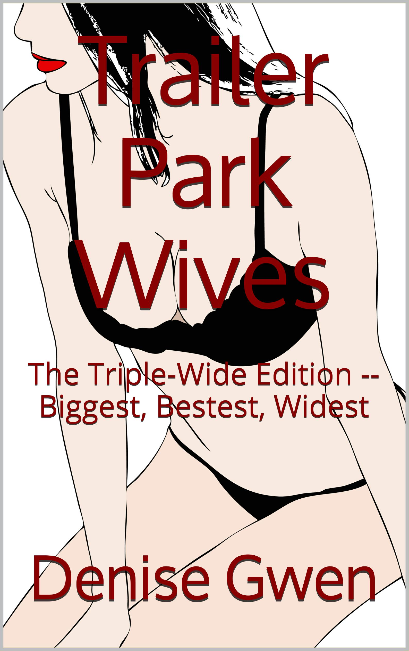 Trailer Park Wives Three -- The Triple-Wide Edition audiobook by Denise Gwen