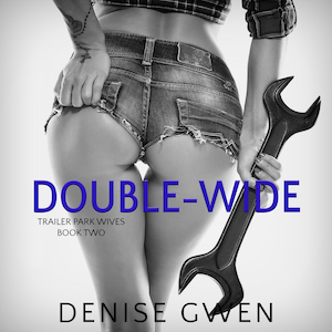 Trailer Park Wives: The Double-Wide Edition audiobook by Denise Gwen