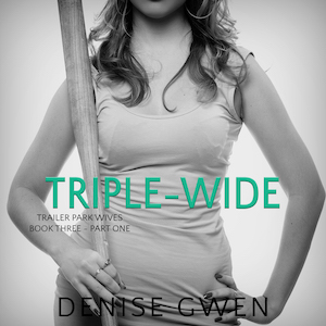Trailer Park Wives: The Triple-Wide Edition audiobook by Denise Gwen